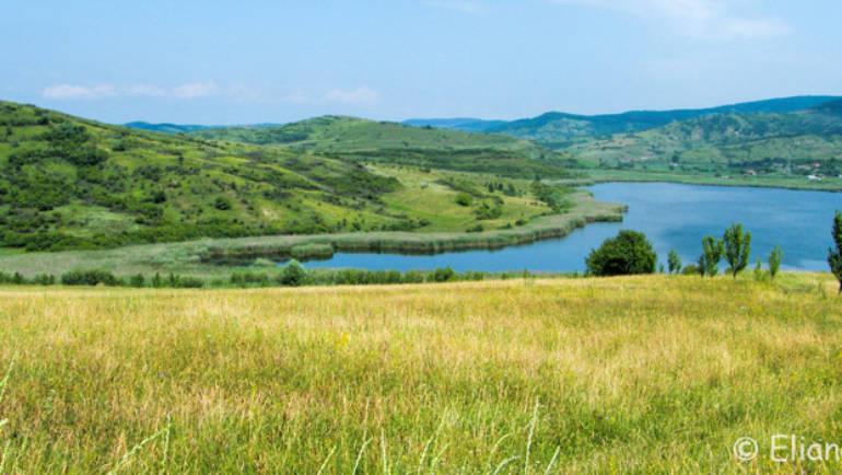 Delta Transilvaniei